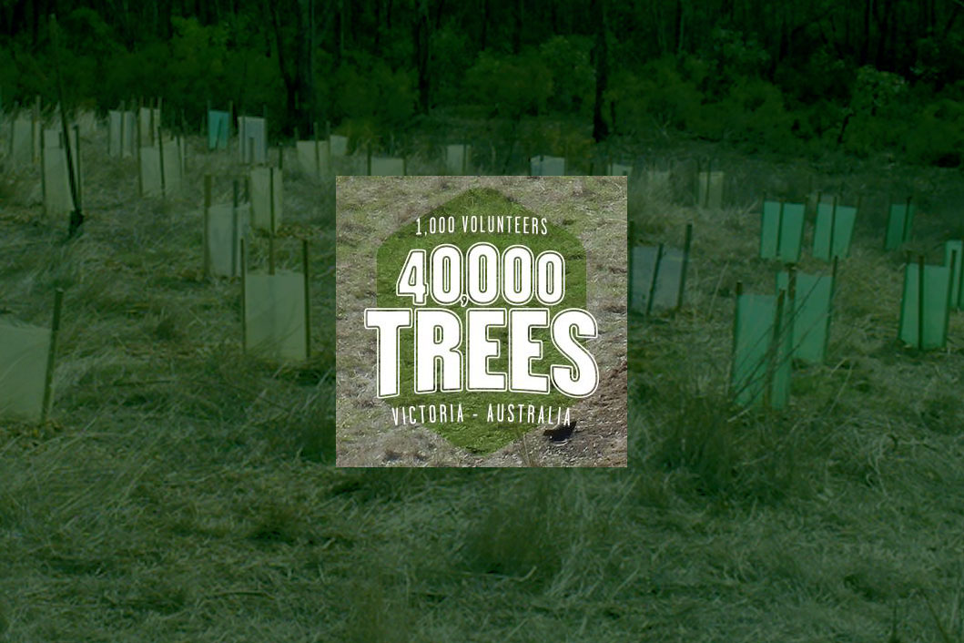 Logo for the 40 000 Trees Project