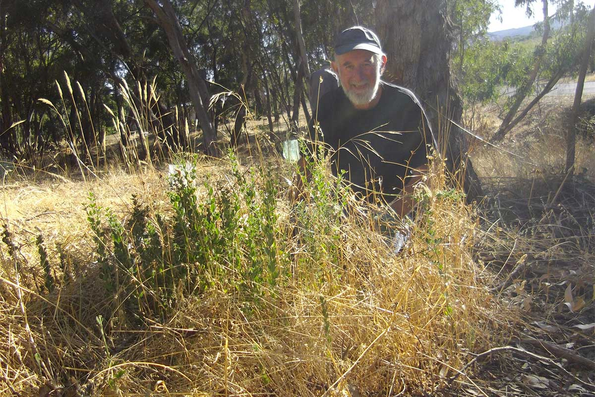 Group member photographed with weeds