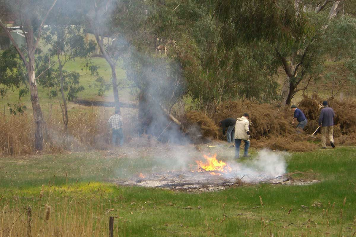 Burning Gorse along the creek at School Road