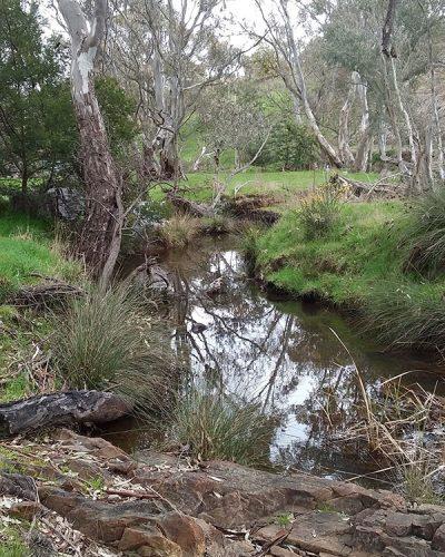 Barkers Creek